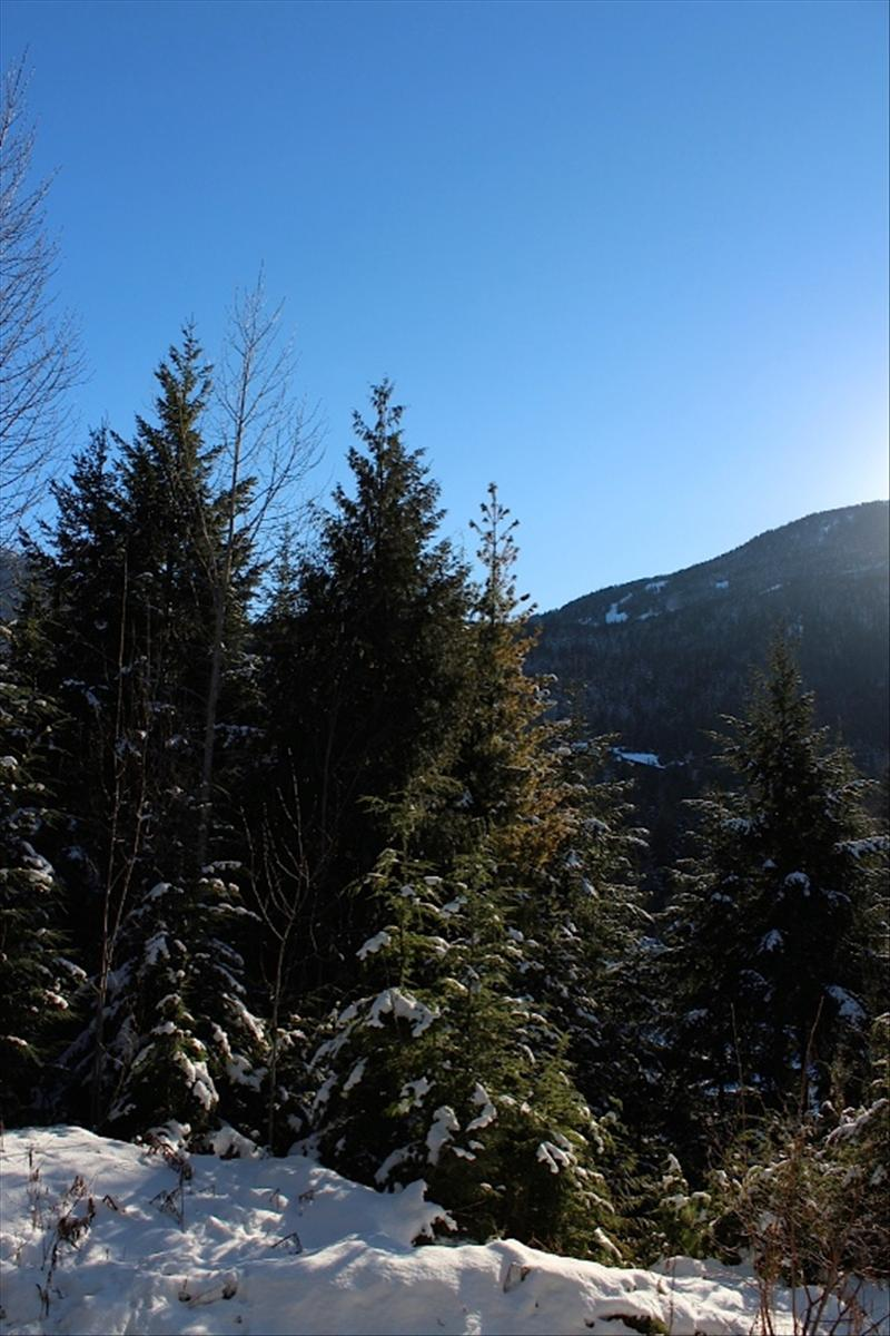 how to find accommodation in whistler