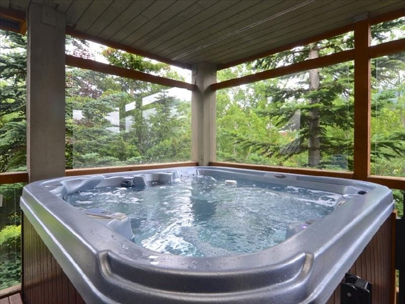 Whistler 2 Bedroom Glaciers Reach, Private HotTub, Pool, BBQ, Sleep 6 Accommodation