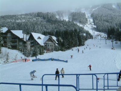 Whistler Accommodations - Ski in Ski Out Aspens Whistler - Rentals By Owner
