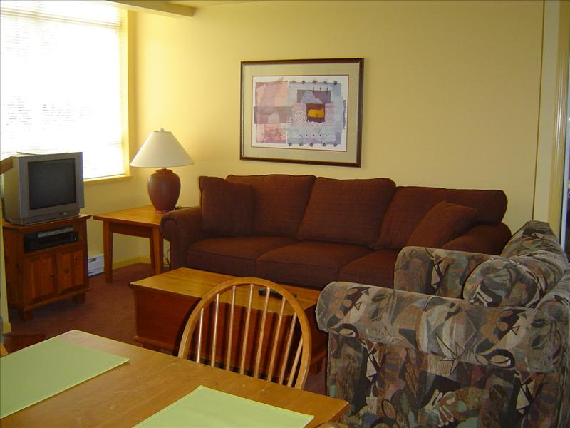 Whistler Accommodations - Living room features a television and a queen size sofa bed - Rentals By Owner