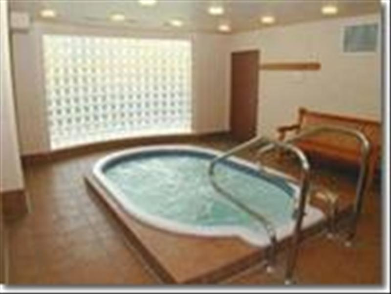 Whistler Accommodations - Shared hot tub - Rentals By Owner