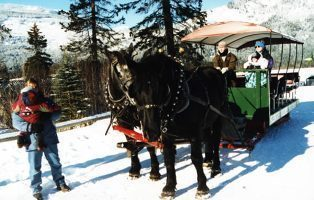 Whistler Sleighrides - BC Canada - Whistler Blackcomb Resort Dinner Sleighride Tour Information