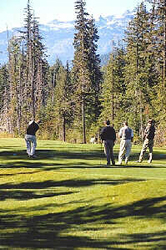 Whistler Golfing - BC Canada - Whistler Blackcomb Resort Golf Information