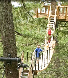 Whistler Treetop Eco Tours - BC Canada - Whistler Blackcomb Resort Treetop Canopy Tour Information
